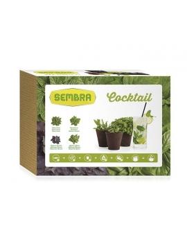 kit-jardim-urbano-Coctail-KCOCK-Sembra-agridiver