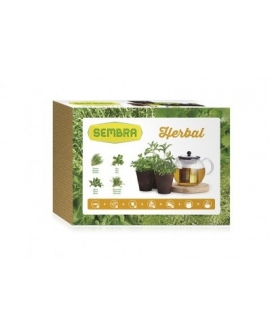Kit-jardim-urbano-Herbal-9094-sembra-agridiver